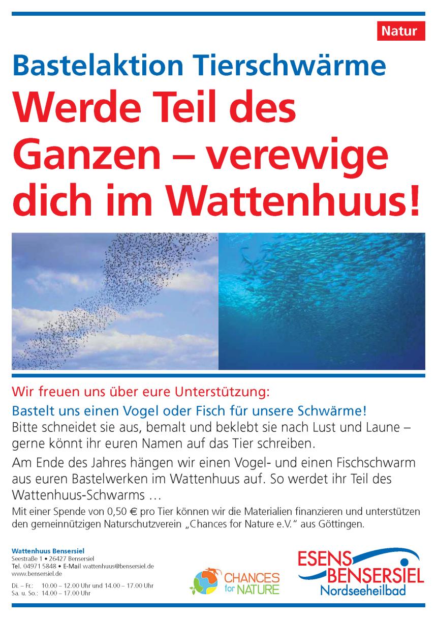 """""""Tierschwärme"""": Bastelaktion für Jung und Alt"""