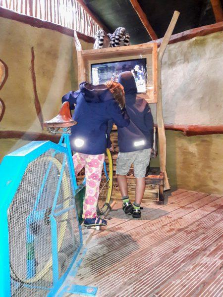 Spenden Fahrrad-Kino im Vogelpark Marlow