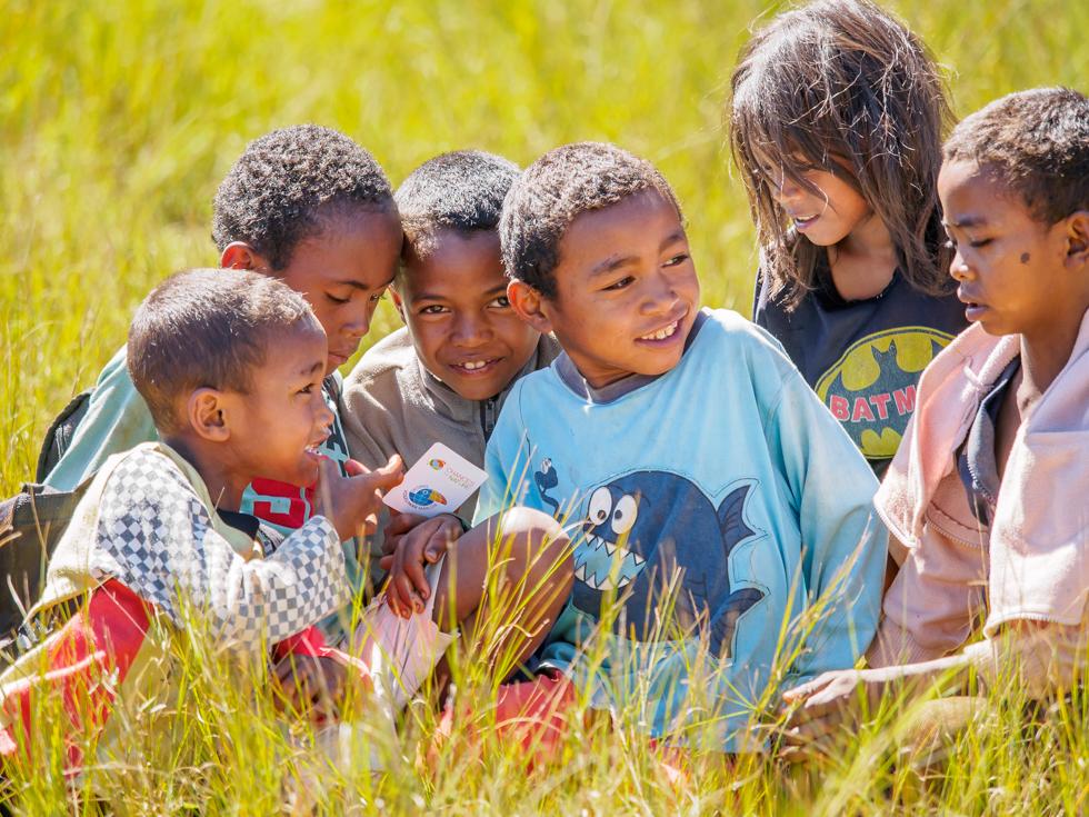 Kartenspiel über die Tiere Madagaskars verbreitet viel Freude