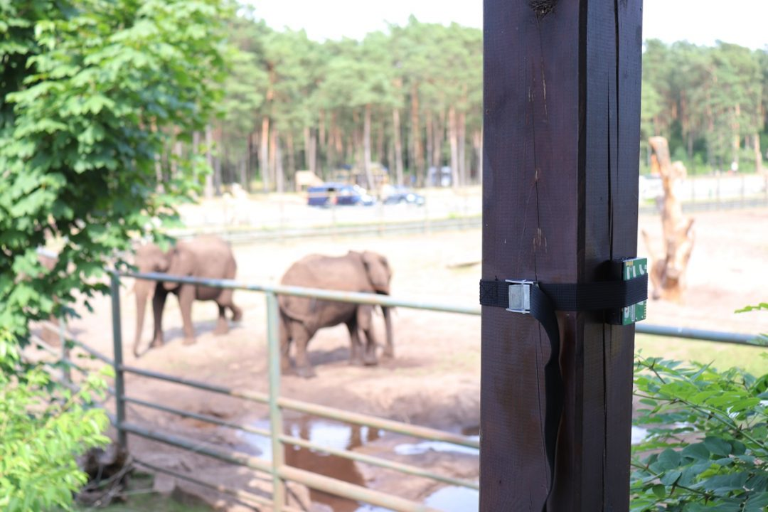 Chances for Nature im Serengeti-Park Hodenhagen