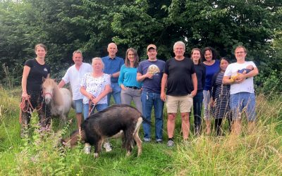 Into the countryside: Chances for Nature's summer gathering